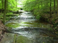 Pennsylvania Hunting Land for Sale and Land for Lease in Pennsylvania